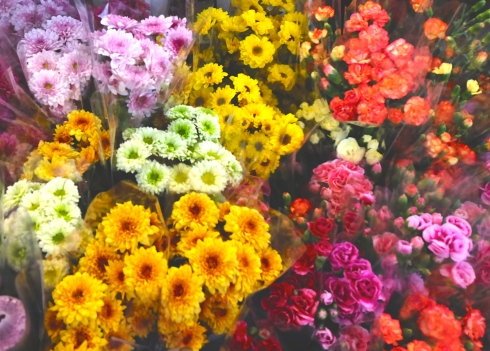 flower-market-blooms