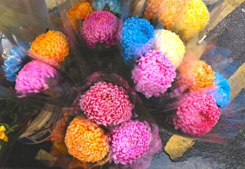flower-market-pom-pom