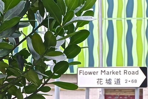 flower-market-hongkong