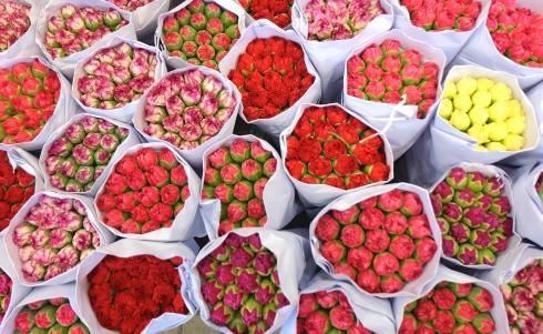 flower-market-roses