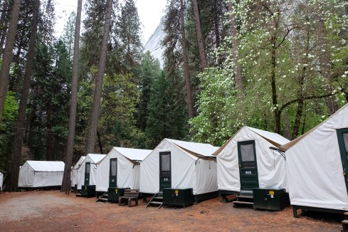cabins-camp-curry