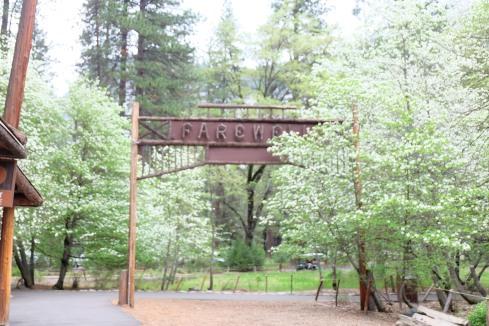 Farewell-Camp-Curry