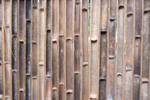 Bamboo-fence-phuket