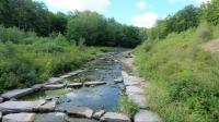 bruce-trail-featured