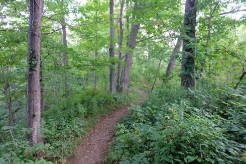 bruce-trail-3